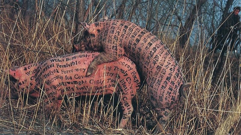 Guggenheim gỡ bỏ các tác phẩm nghệ thuật động vật gây tranh cãi